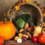 野菜のネット販売が儲かる理由と販売成功のコツ